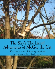 7The SKy's the Limit_THUMBNAIL_IMAGE